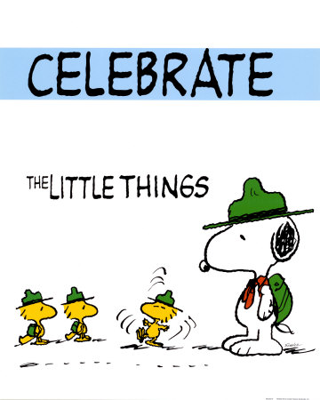 Celebrate Little Things Peanuts